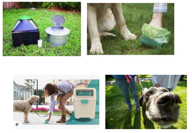 Trash Can For Dog Poop