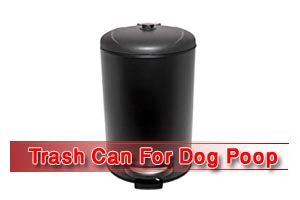 Best Trash Can For Dog Poop [Reviews in 2020]
